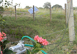 Solar Pump Installation at Farm house