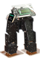 RoboLeg