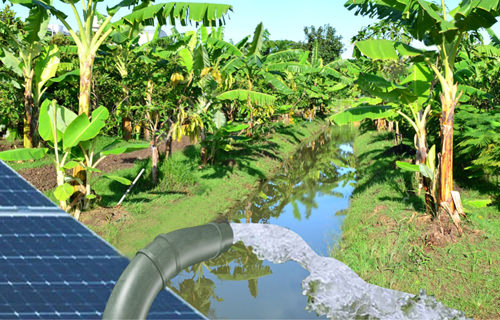 Solar Water Pump 453